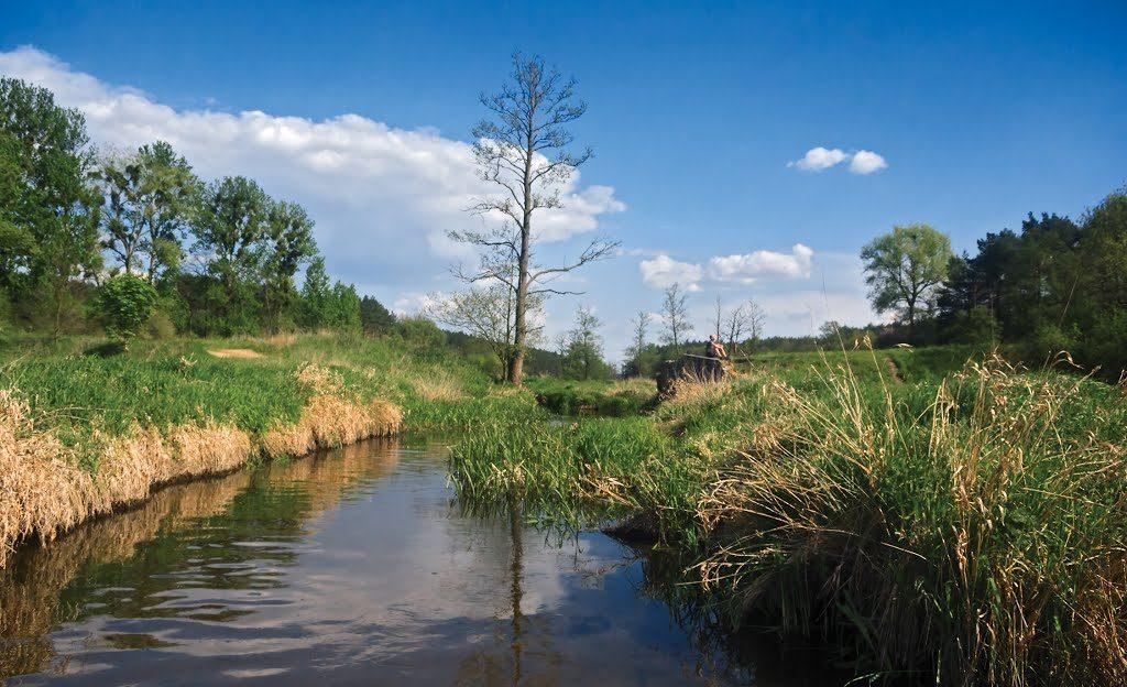 Rzeka Głuszynka